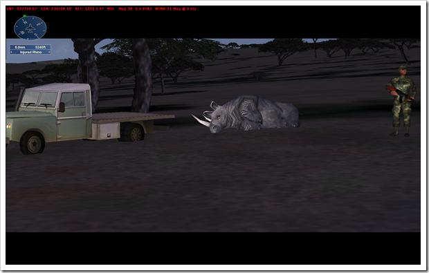 Injured Rhino